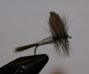 blue dun dry fly is a great fly to learn to tie and fish